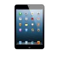 Apple iPad Mini Wi-Fi 16GB - Black - MD528