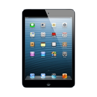 Apple iPad mini Wi-Fi + Cellular 16GB - Black & Slate - MD540